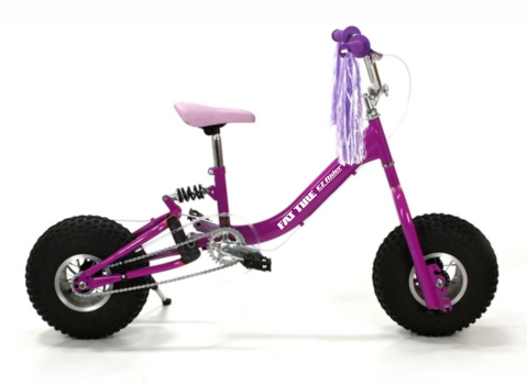 Go and Grow Cycles Fat Ez Rider Girls Pink Adjustable Fat Tire Bike